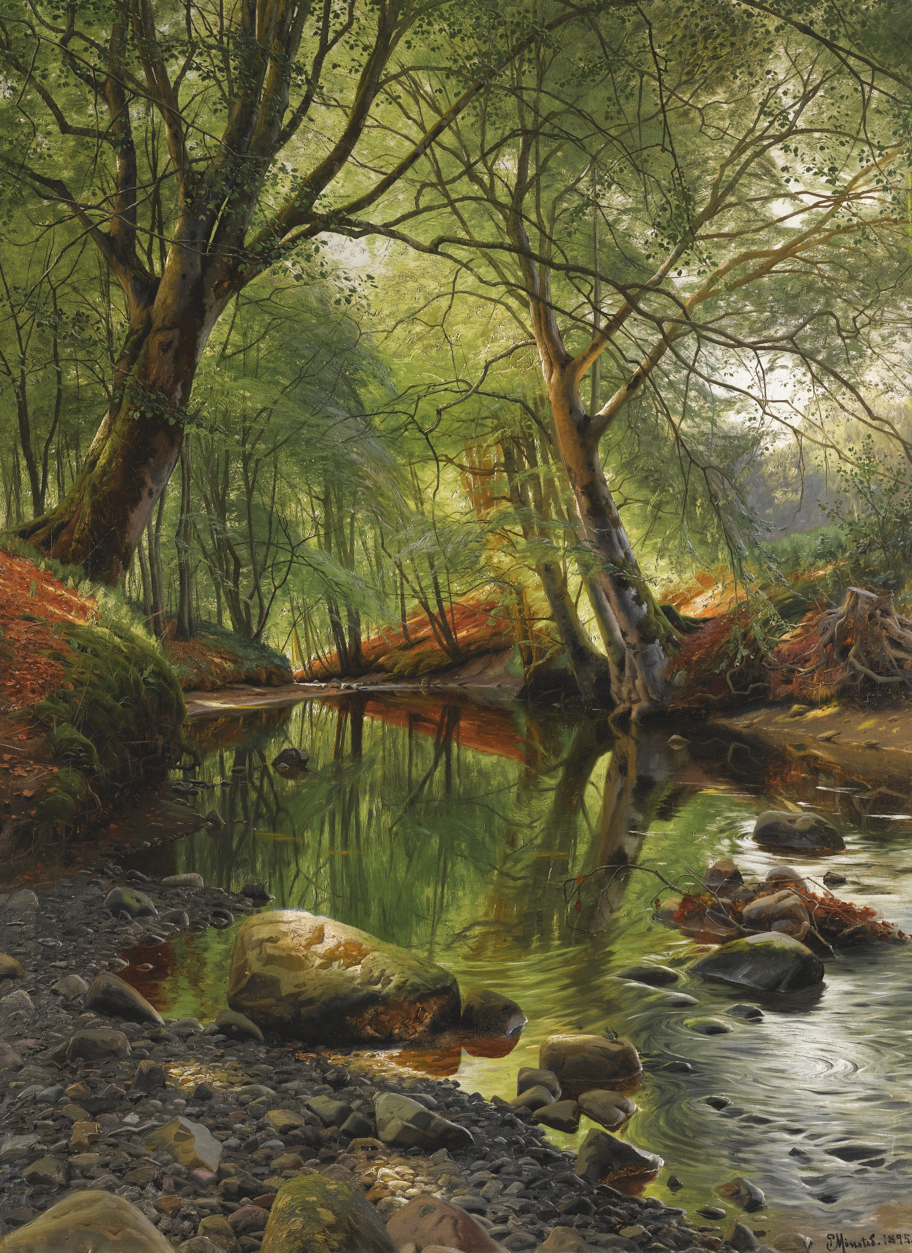 Nature S Canvas Art