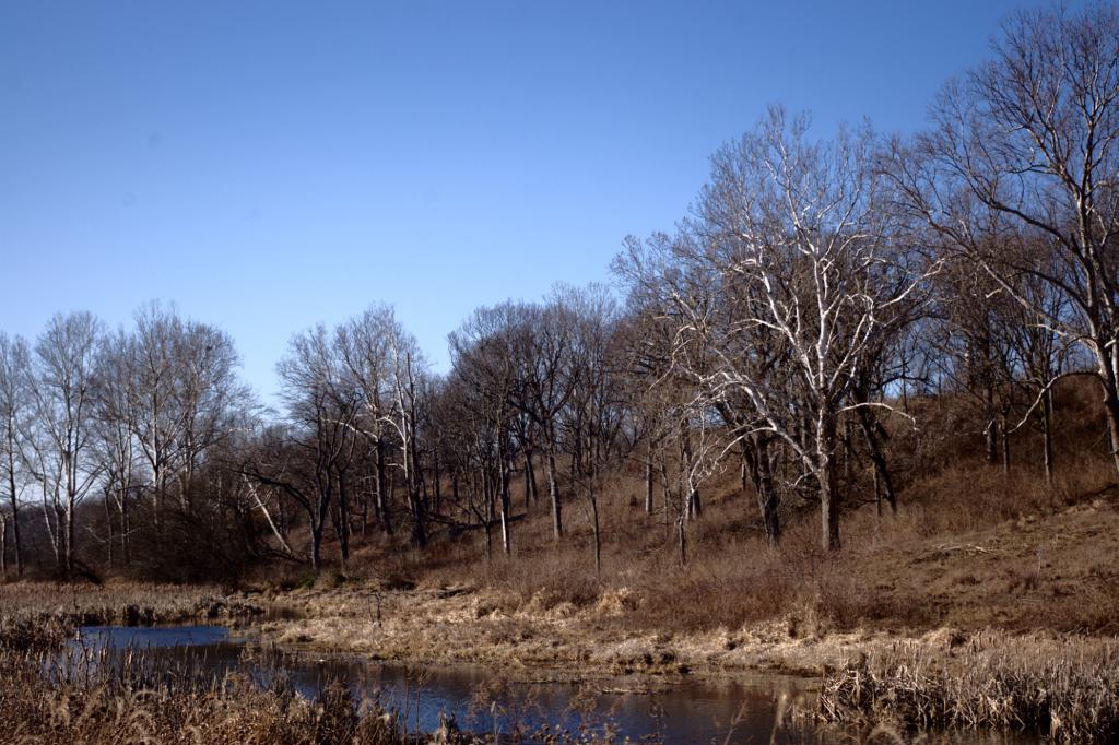 Charlestown State Park Rose Island Trail