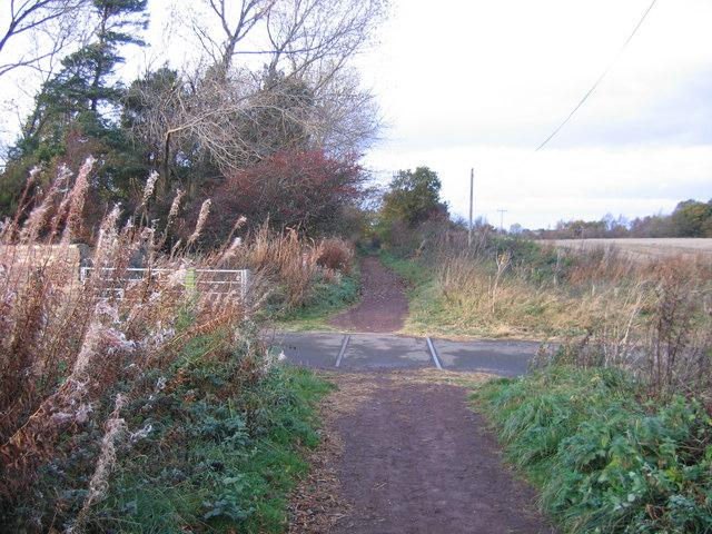 Rails on the Pencaitland Railway Path - geograph.org.uk - 963036