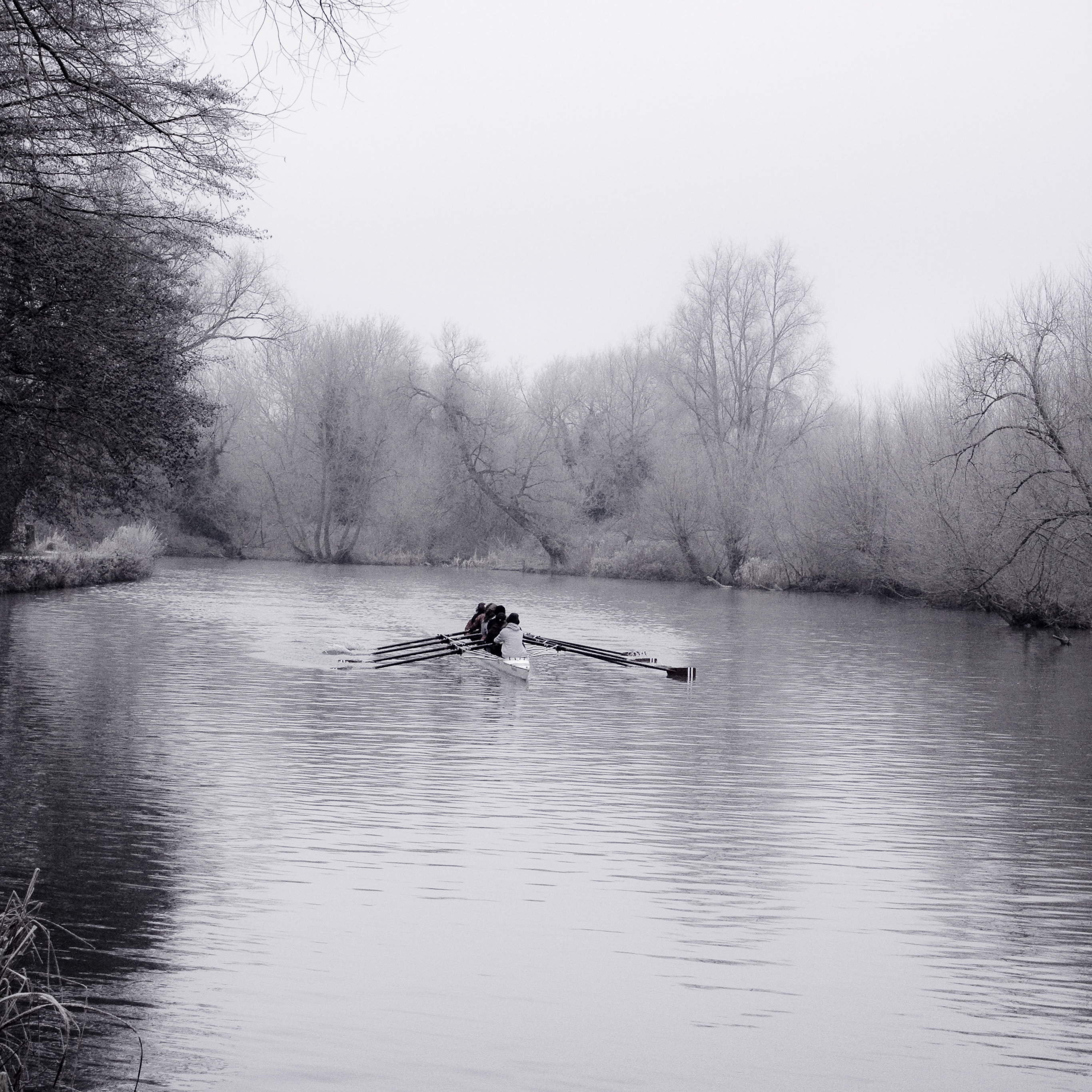 Rowing On The River Thames Wikipedia
