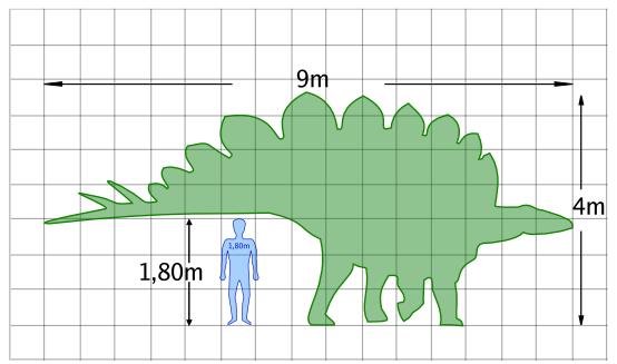 comparacion entre hombre estegosaurio