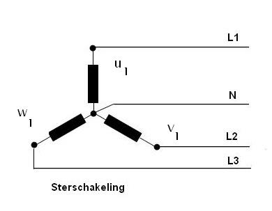 https://upload.wikimedia.org/wikipedia/commons/7/73/Sterschakeling.jpg