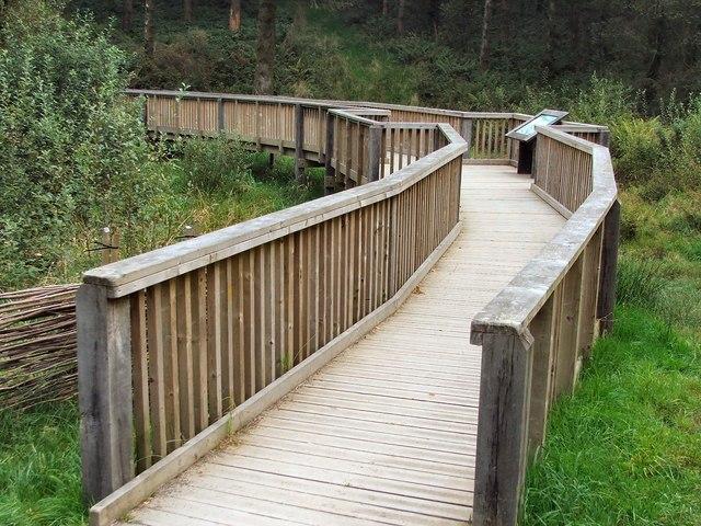 The Boardwalk at Wistlandpound - geograph.org.uk - 1498629