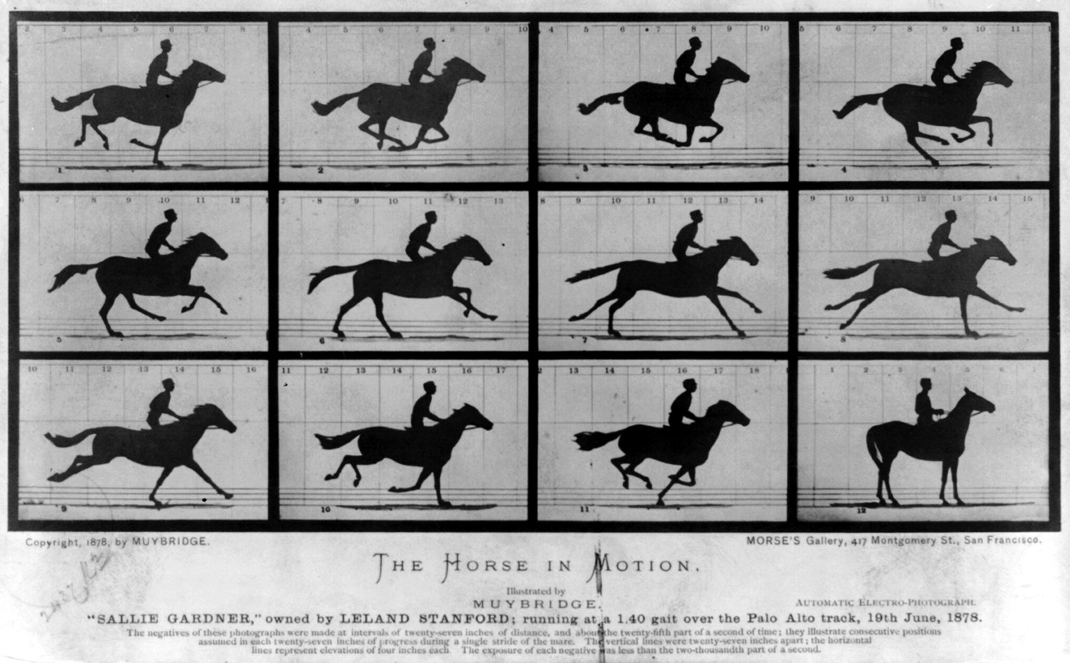 eadweard muybridge and a horse in motion