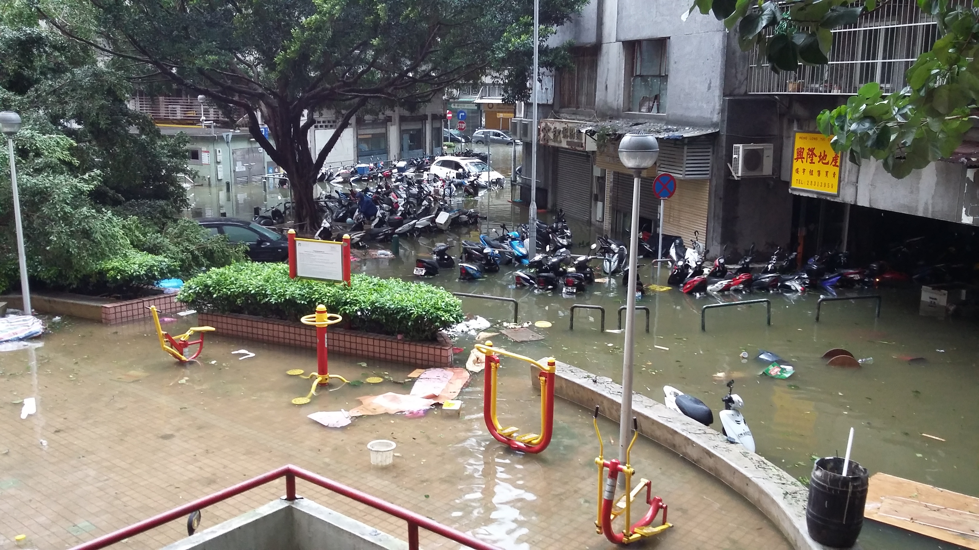 Image Result For Typhoon Hong Kong