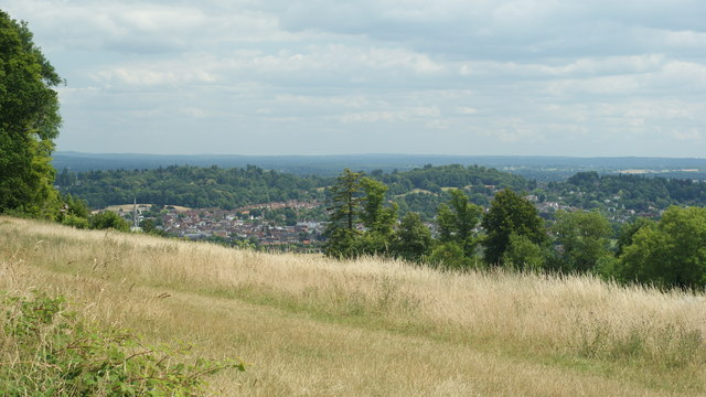 View From Ranmore Common, Surrey (1) - geograph.org.uk - 1395238