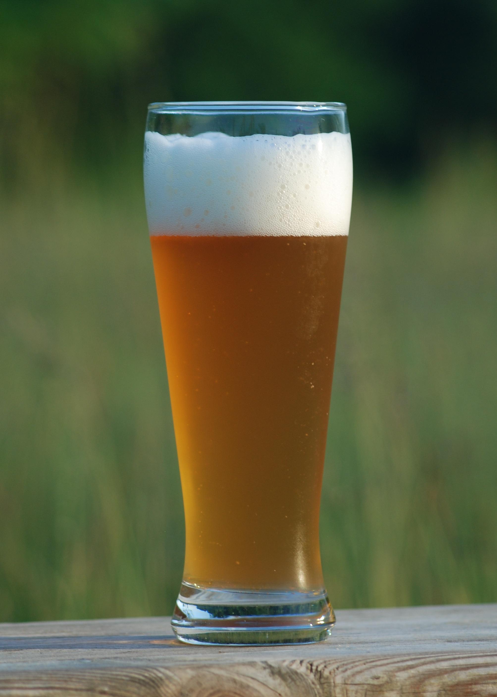 ビール wikipedia