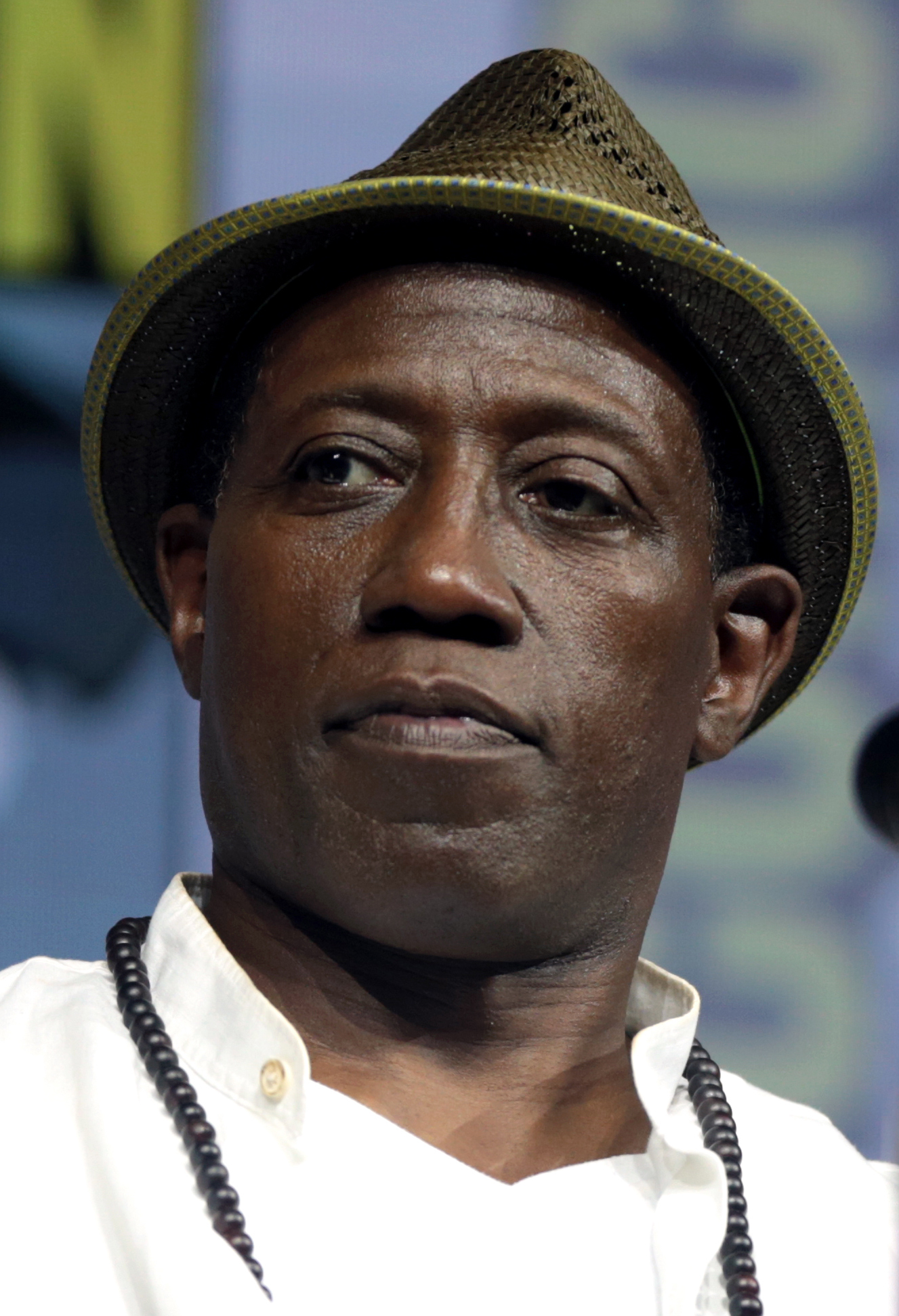 Picture of an author: Wesley Snipes