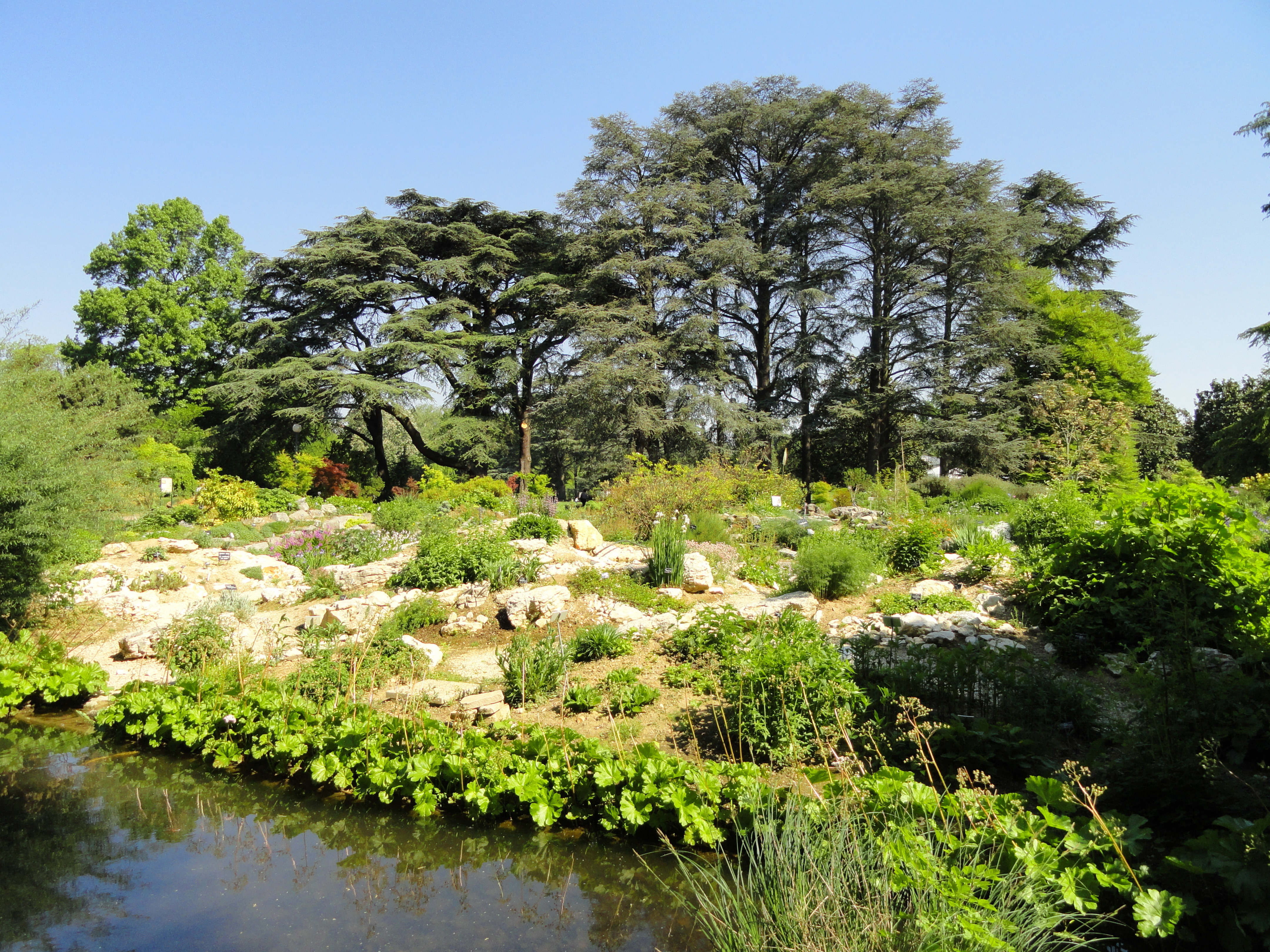 Jardin Botanique De Lyon : file alpine garden jardin botanique de lyon dsc05312 ~ Farleysfitness.com Idées de Décoration