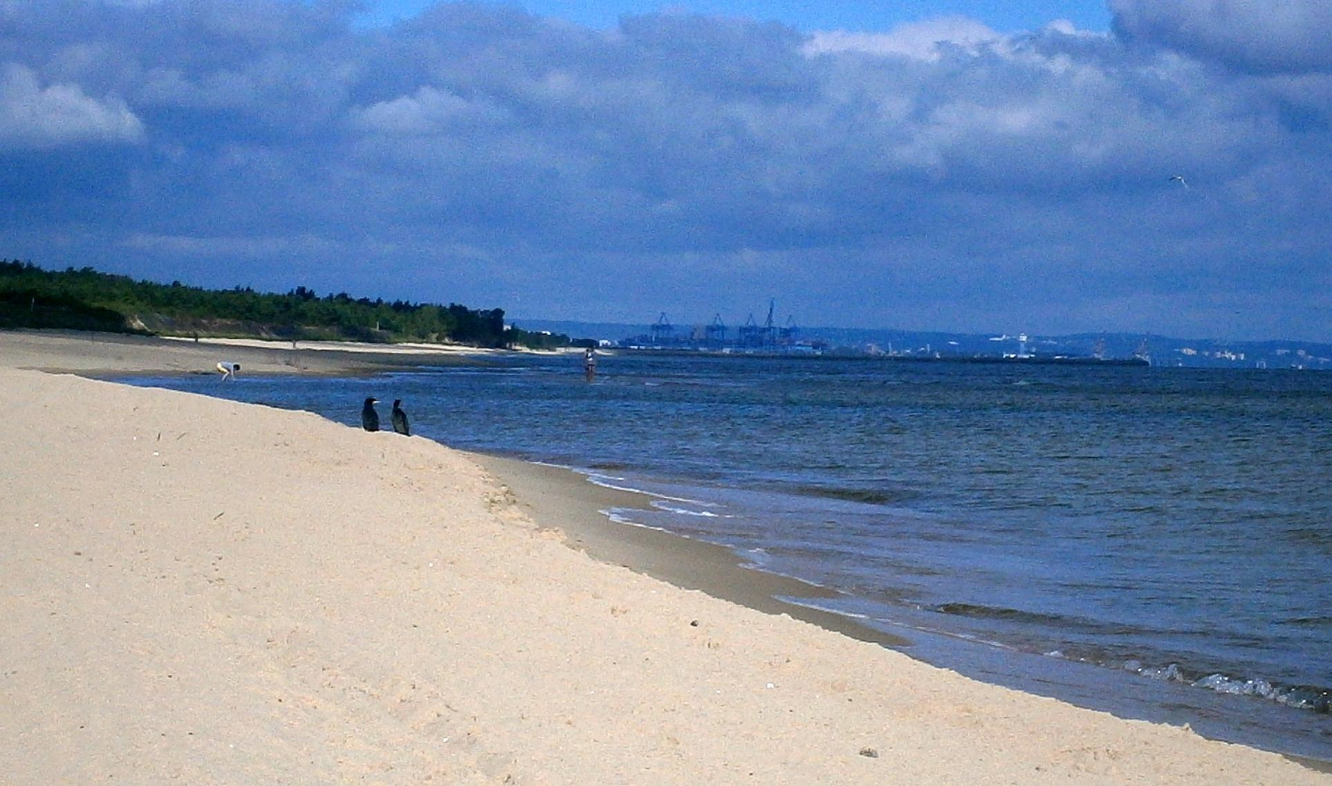 Najladniejsze Plaze Na West Palm Beach Florida