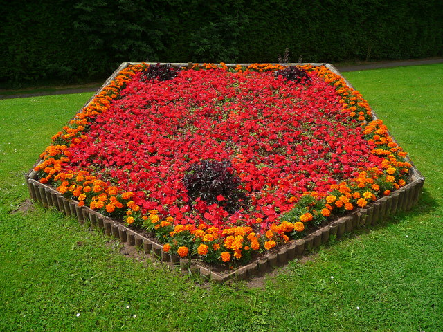 flowerbed - Wiktionary