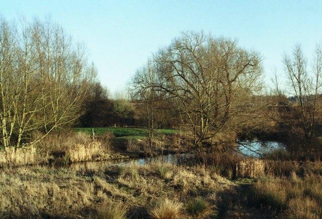 Biss Meadows Country Park, Trowbridge - geograph.org.uk - 212380