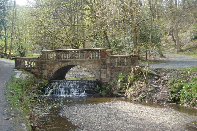 Bridge over the stream in Sunnyhurst Wood - geograph.org.uk - 163248