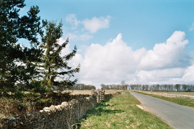 File:Copse on road to Churchill - geograph.org.uk - 158812.jpg