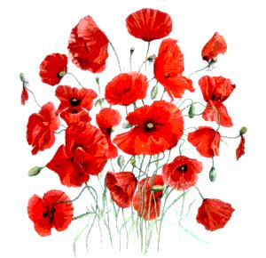 File wikimedia commons for Bouquet de fleurs homme