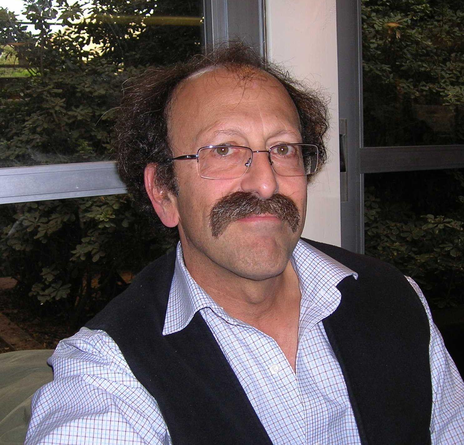 David Shulman, 2008