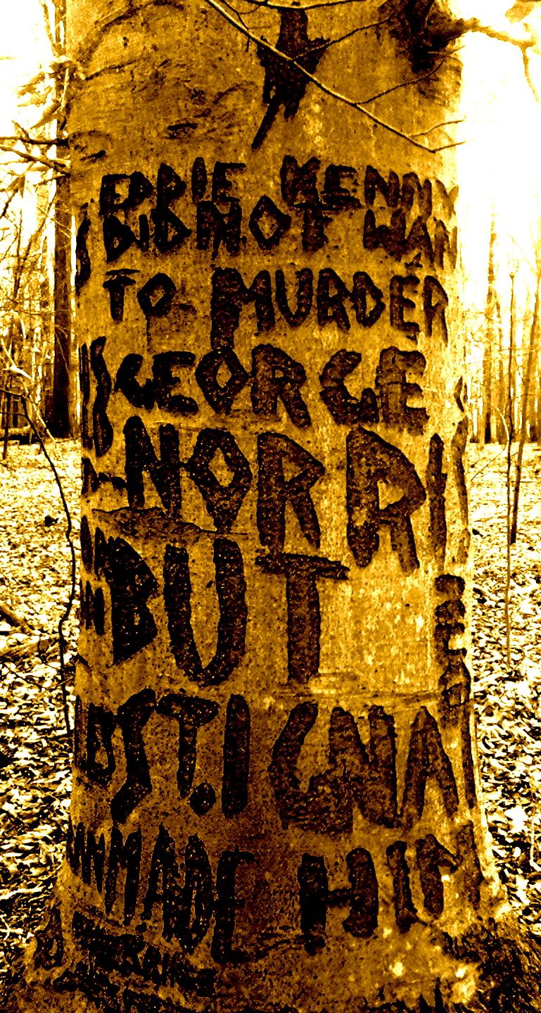 精神病患者が言葉を刻んだ木