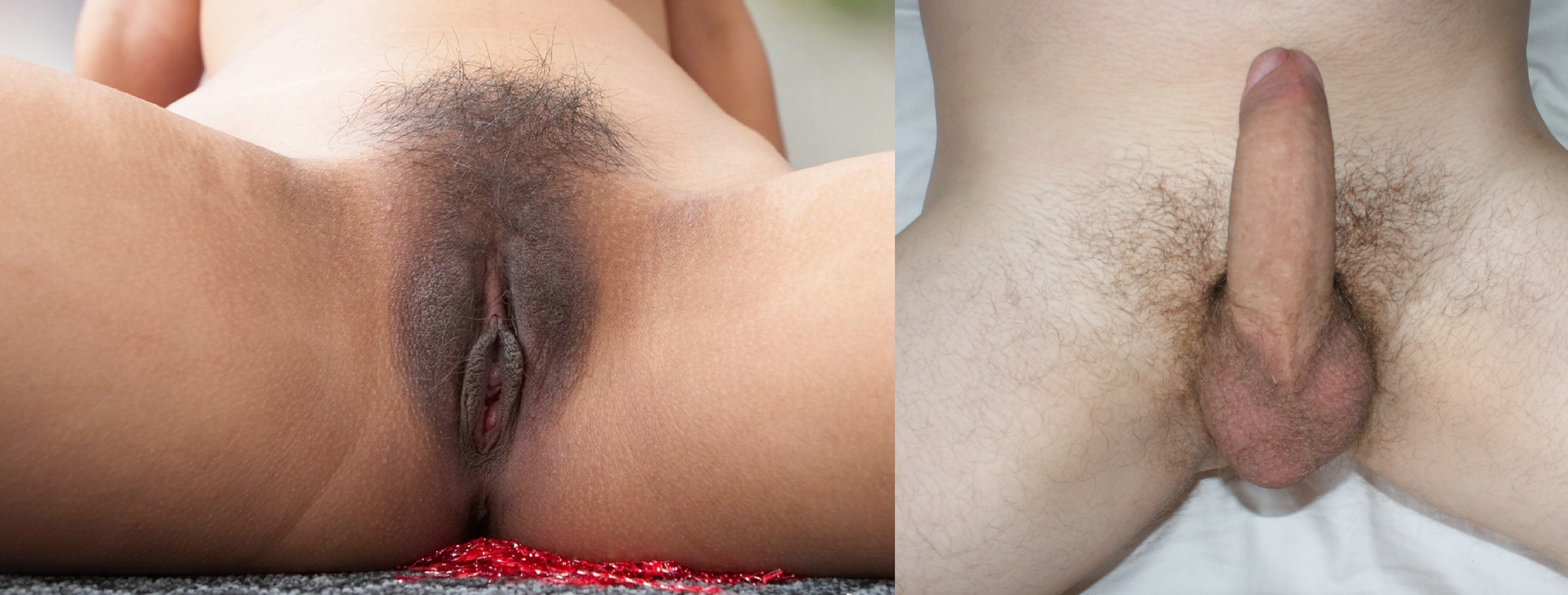 image Male only pubic hair with penis free