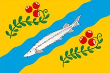 Nyuksensky District District in Vologda Oblast, Russia