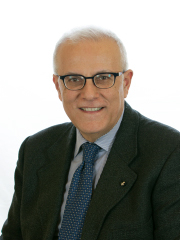 Francesco Maria Amoruso datisenato 2013.jpg