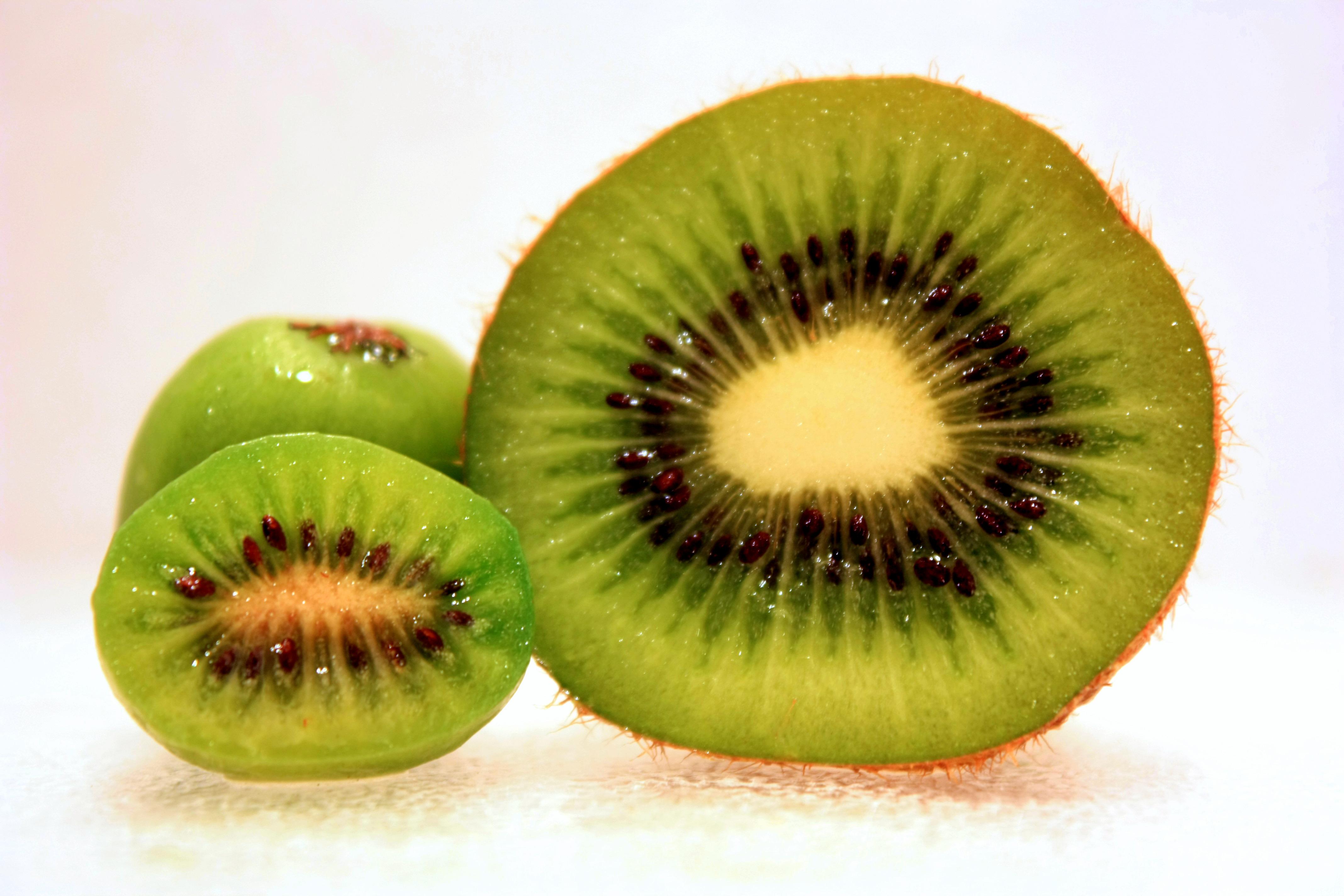 File:Hardy-Kiwi-Comparison-2.jpg - Wikipedia