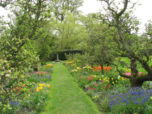 Hergest Croft - ornamental orchard - geograph.org.uk - 790126
