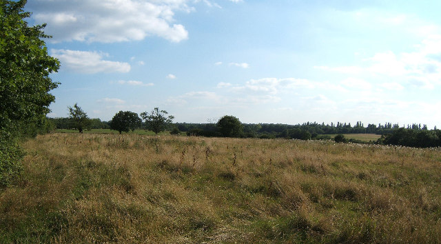Horton Country Park - geograph.org.uk - 35094
