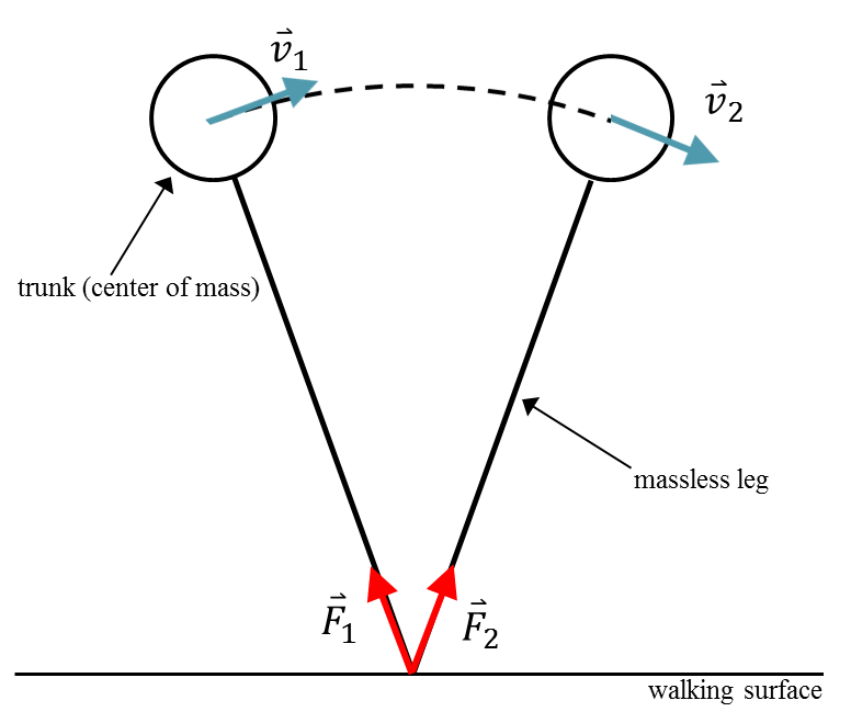 Diagram of an inverted pendulum model with .