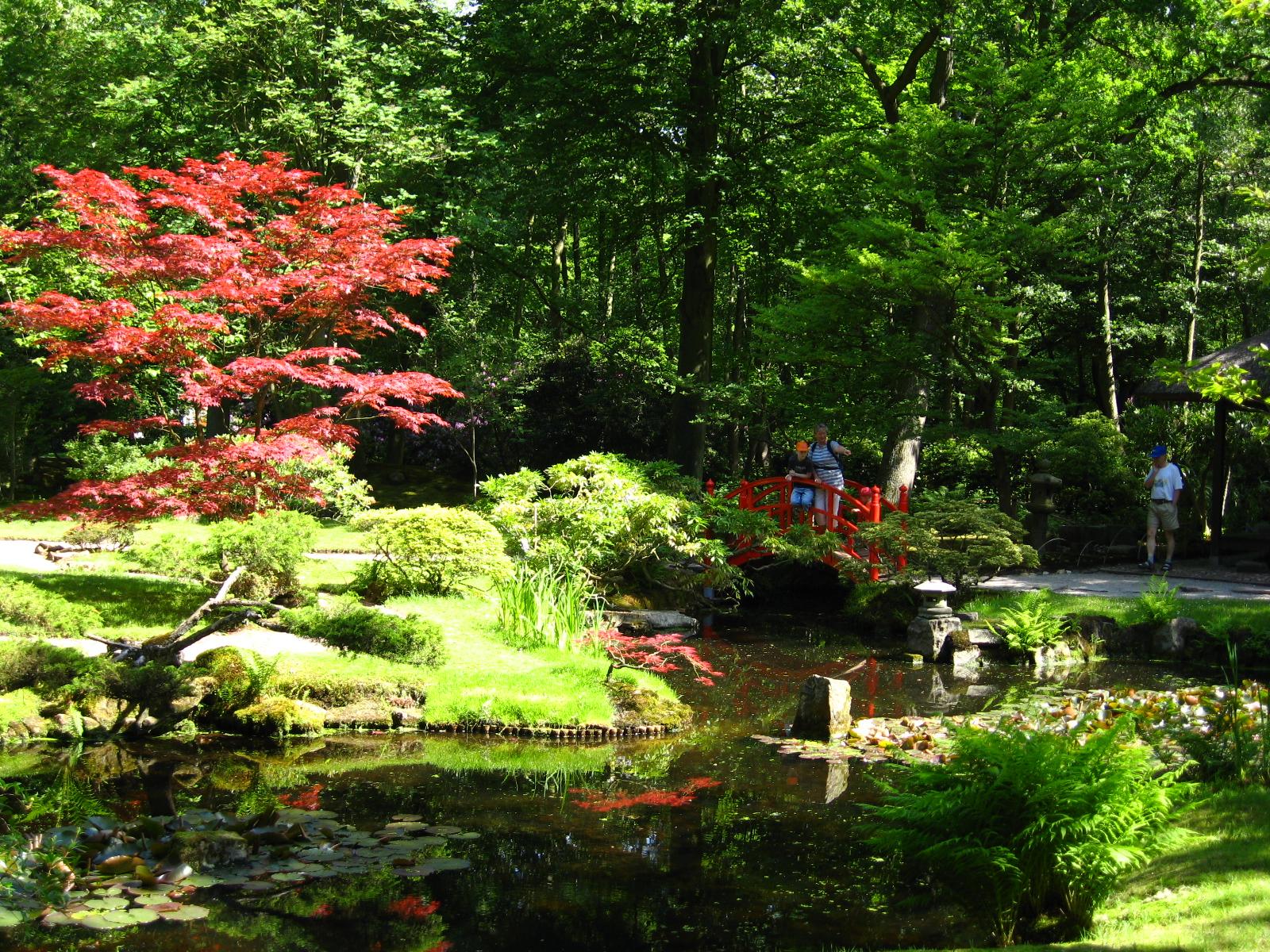 Landgoed clingendael inrichting van de japanse tuin in wassenaar monument - Tuin fotos ...