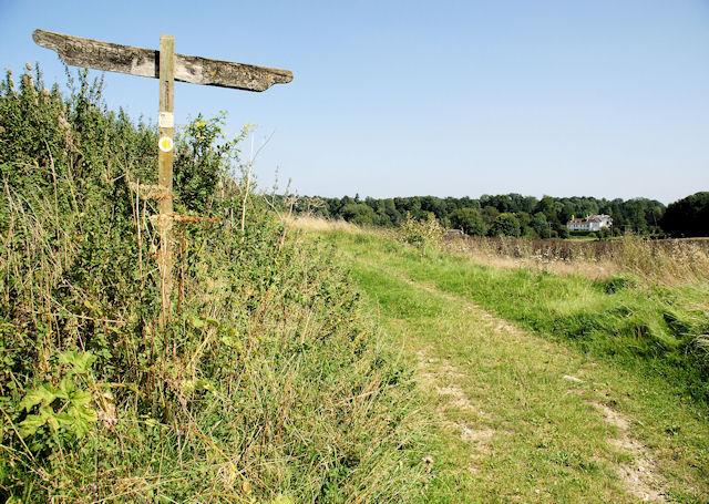 King's Way near Tichborne - geograph.org.uk - 949661