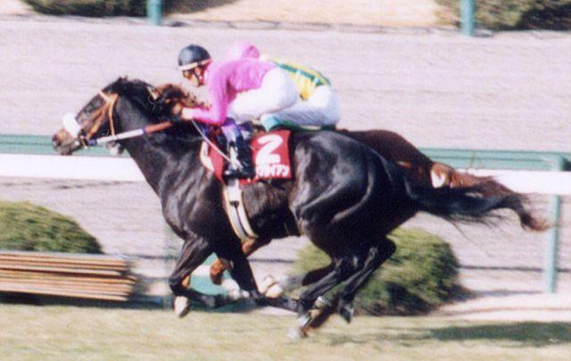 Narita Brian 19960309R1.jpg