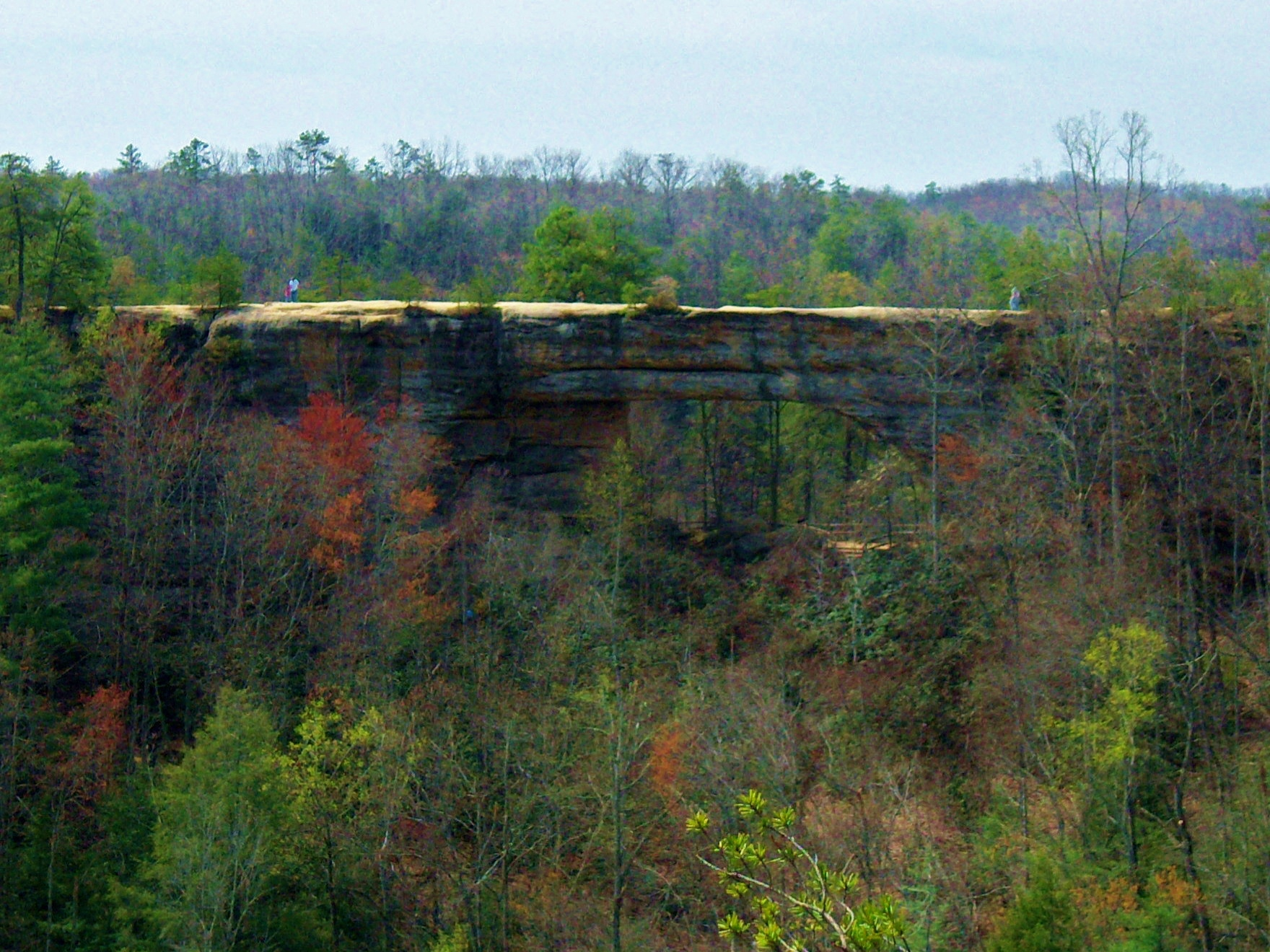 http://upload.wikimedia.org/wikipedia/commons/7/74/Natural_Bridge_%28Kentucky%29.jpg