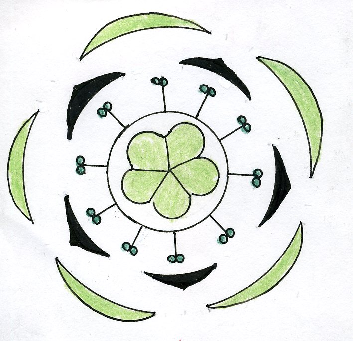 file oxalis floral diagram jpg wikimedia commons : floral diagram - findchart.co