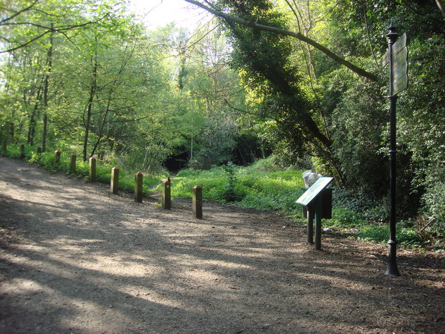 Parkland Walk - geograph.org.uk - 1590485