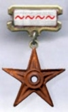 Registered editor badge with tildes.jpg
