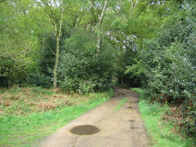 Restricted Byway - Bucklebury Common - geograph.org.uk - 791653