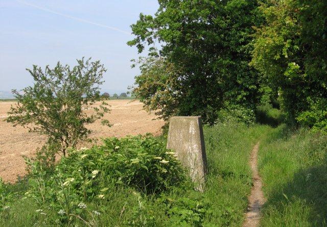 Ridgeway Trigpoint - geograph.org.uk - 184417