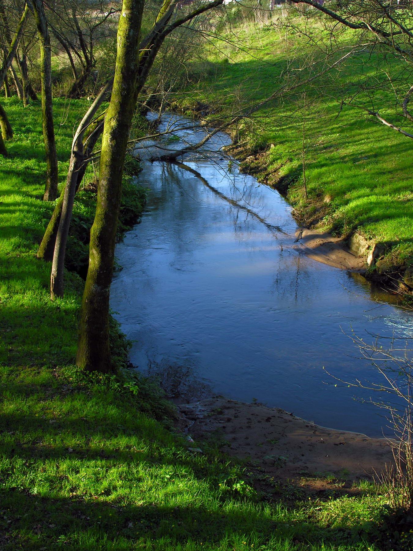 Río Sar en Galicia (España) (wikimedia.org)