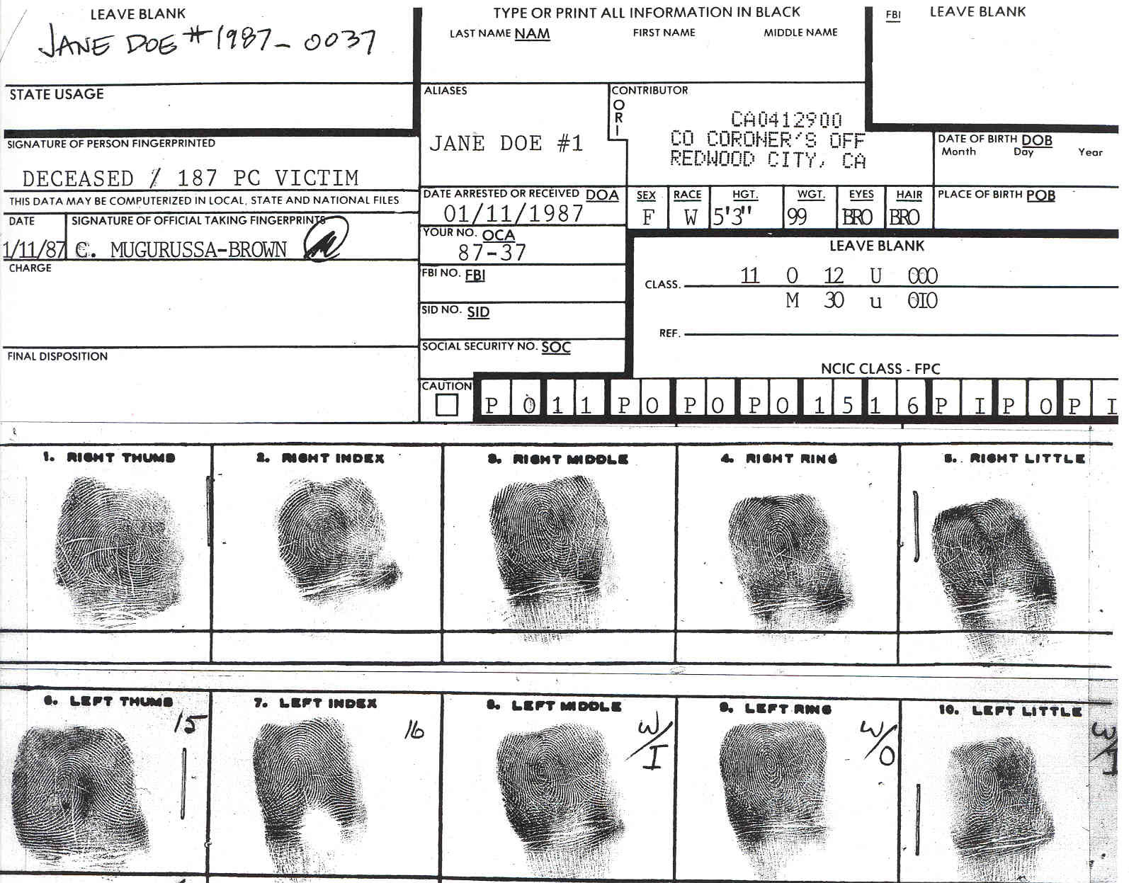 fingerprint classification essay The idea of the fingerprint sourcebook originated during a meeting in april  2002  the science of fingerprints: classification and uses by federal bureau  of  that i was having to write essay papers for the friction ridge analysis class.
