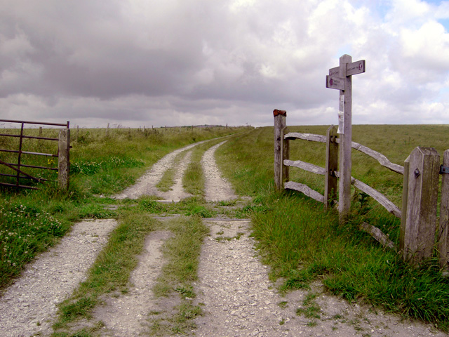 South Downs Way near the top of Sullington Hill - geograph.org.uk - 870241