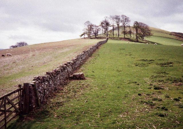 St Cuthbert's Way, looking up Crookedshaws Hill - geograph.org.uk - 65119