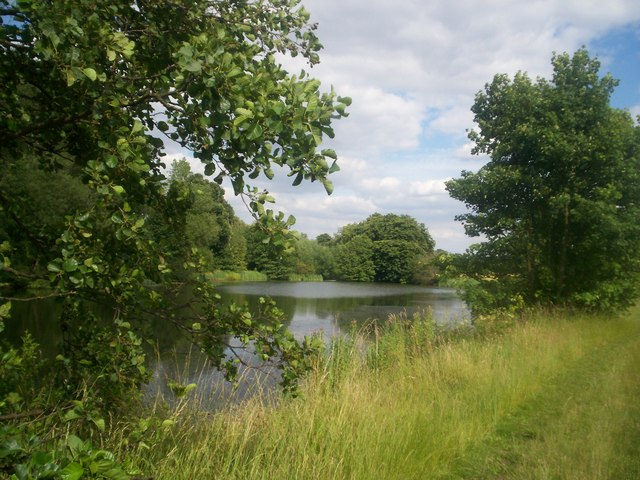 The Morley Pond - geograph.org.uk - 881774