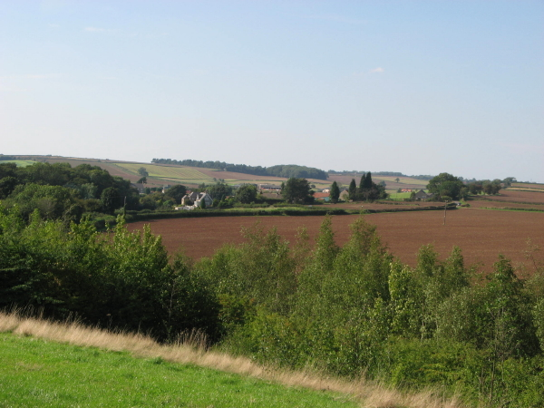 The northern edge of Poulter Country Park - geograph.org.uk - 240815