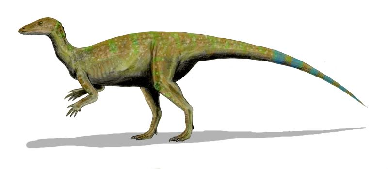 File:Thescelosaurus_BW3 on Drawing Page
