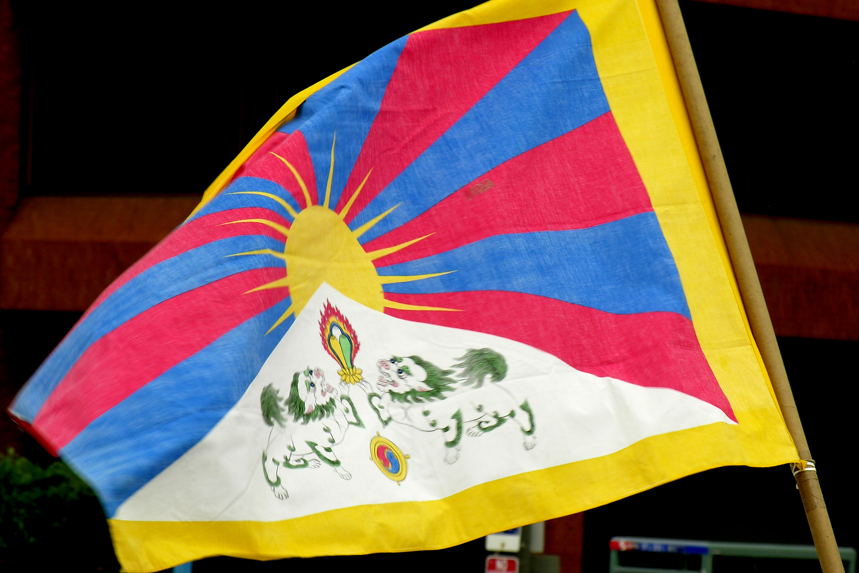 Image result for Tibet flag