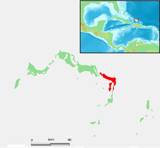 Caicos do Leste