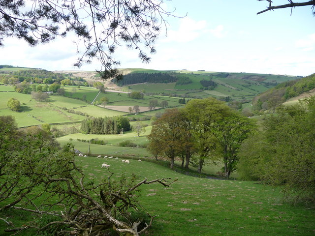 View over part of the Ceiriog Valley - geograph.org.uk - 1864271