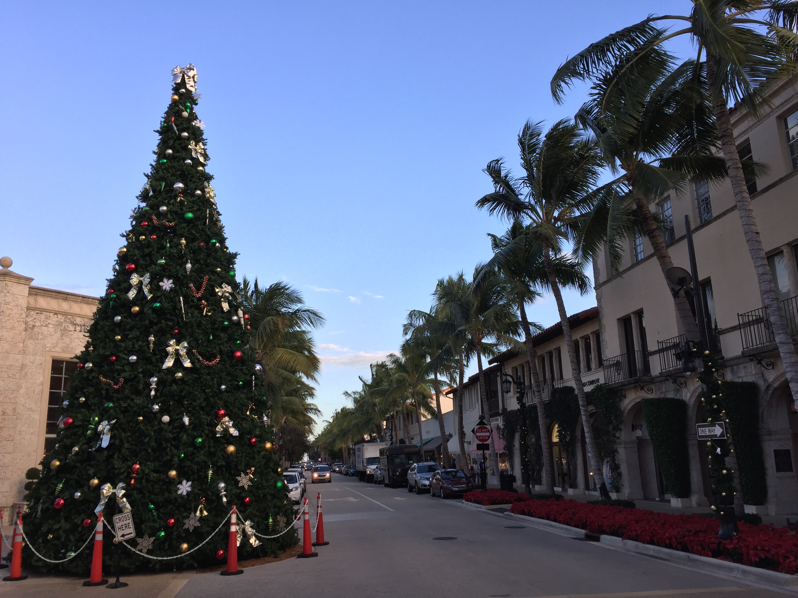 Fileworth Avenue In Palm Beach Florida With Christmas Tree  Jpg