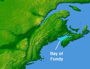 Bay of Fundy bay on the east coast of North America