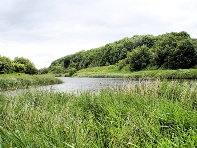 Anderton Nature Park - view up the River Weaver - geograph.org.uk - 858128